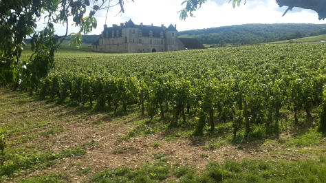 Burgundy's most well known vineyard site, Clos de Vougeot, aslo serves as headquarters of the Confrerie de Chevaliers du Tastevin