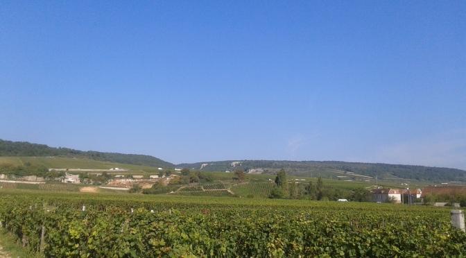 Rhythm & Blues in Burgundy