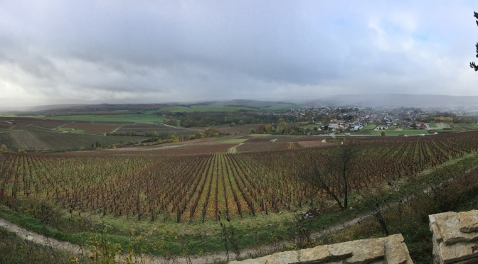Gris, Grey, Gray: A Bright Spot in Chablis